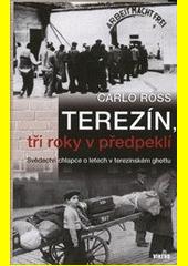 Obal knihy Terezín, tři roky v předpeklí CZ