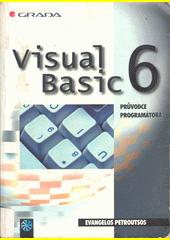 Visual Basic 6 - průvodce programátora CZ