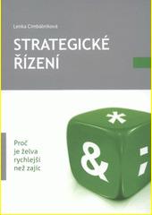 Strategické řízení CZ