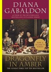 Obal knihy Dragonfly in Amber EN