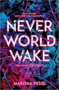 Obal knihy Neverworld Wake
